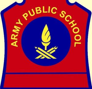 Teacher Jobs Army Public School Application Form TGT PGT